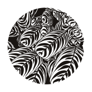 TPerman–Stripes-02-Preview