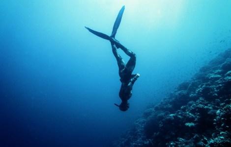 free diver swimming in the sea