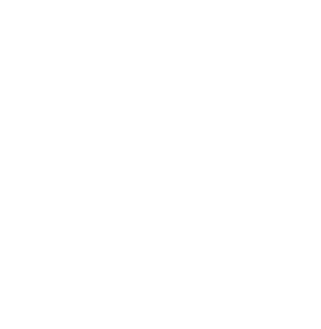 Surf Line Bus - Bus line service from New York City (NYC) to Long Beach Island (LBI)