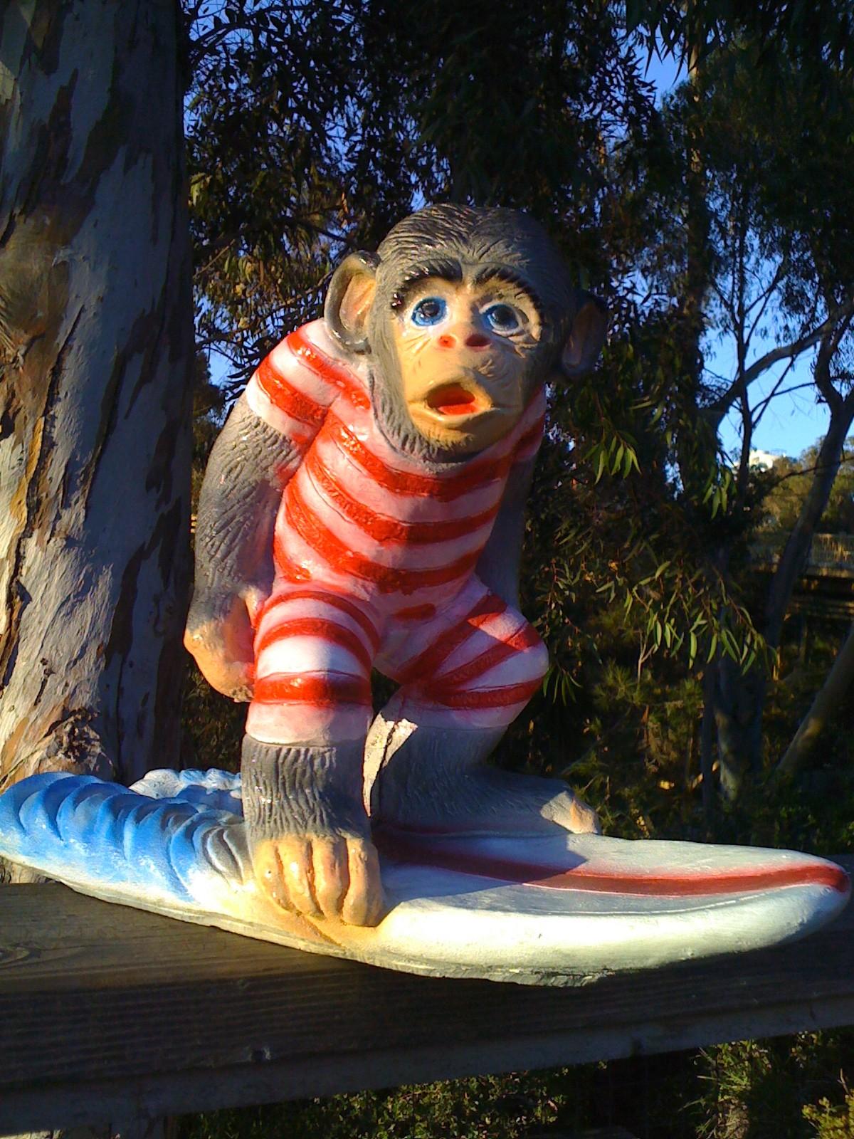 Surf Monkey Fellowship