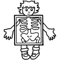 Anatomy » Coloring Pages » Surfnetkids