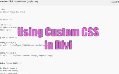Using Custom CSS in Divi
