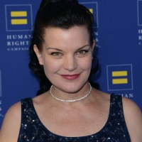 Pauley Perrette Plastic Surgery Before After, Breast Implants