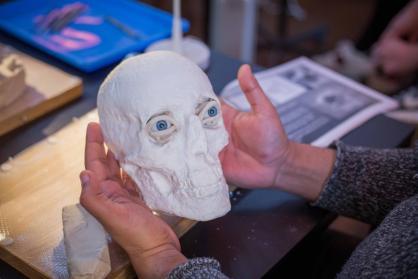 Artistic Perspectives for Facial Plastic Surgery<br><font size=3>TBC</font>