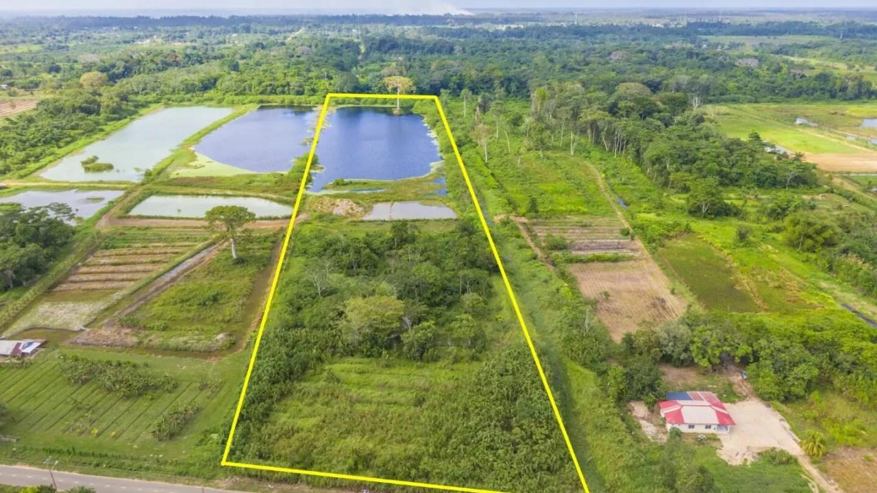 Damboentong 230 - Kavel met een groot meer - Surgoed Makelaardij NV - Paramaribo, Suriname