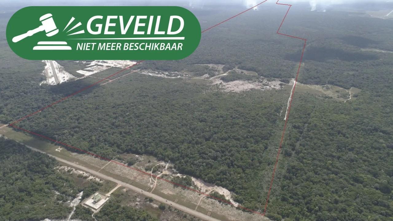 Afobakaweg 33 km 46-48 - Groot terrein gelegen langs de Afobakaweg - Surgoed Makelaardij NV - Paramaribo, Suriname