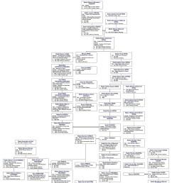 7 savran bendery chassidic dynasty diagram [ 1650 x 1935 Pixel ]