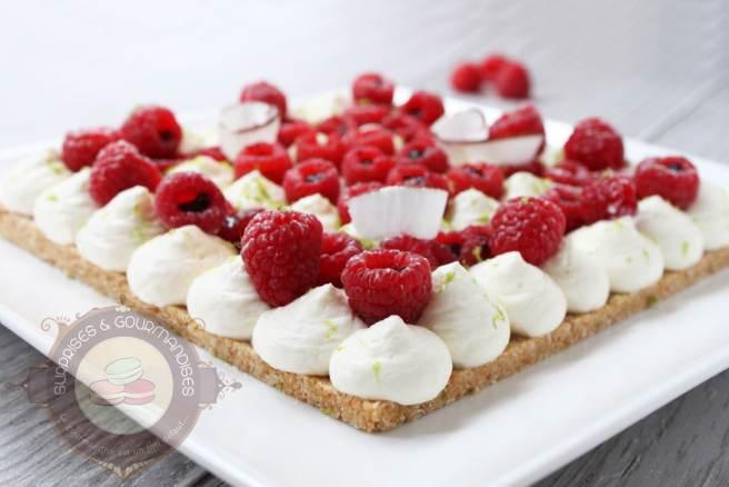 tarte-cheesecake-coco-framboise1