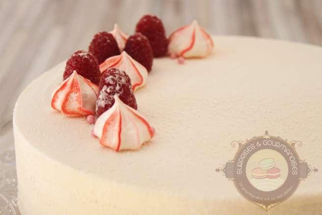 entremets-amande-framboise-vanille2