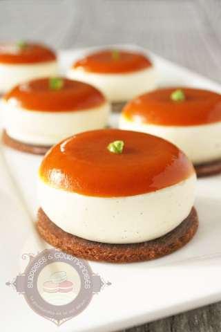 entremets-abricot-vanille-orange1