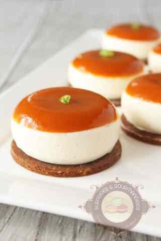entremets-abricot-vanille-orange4
