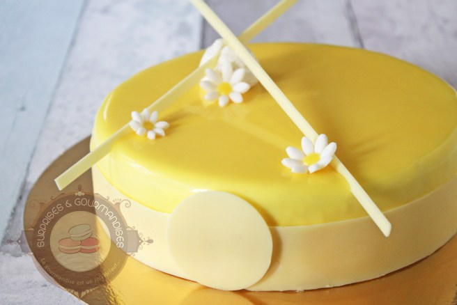 entremets-ananas-vanille01