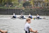 Senior Men's 4+ racing at Fours Head 2019