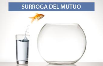 Surroga Mutuo 2019 Guida Surrogazione Portabilità Mutui