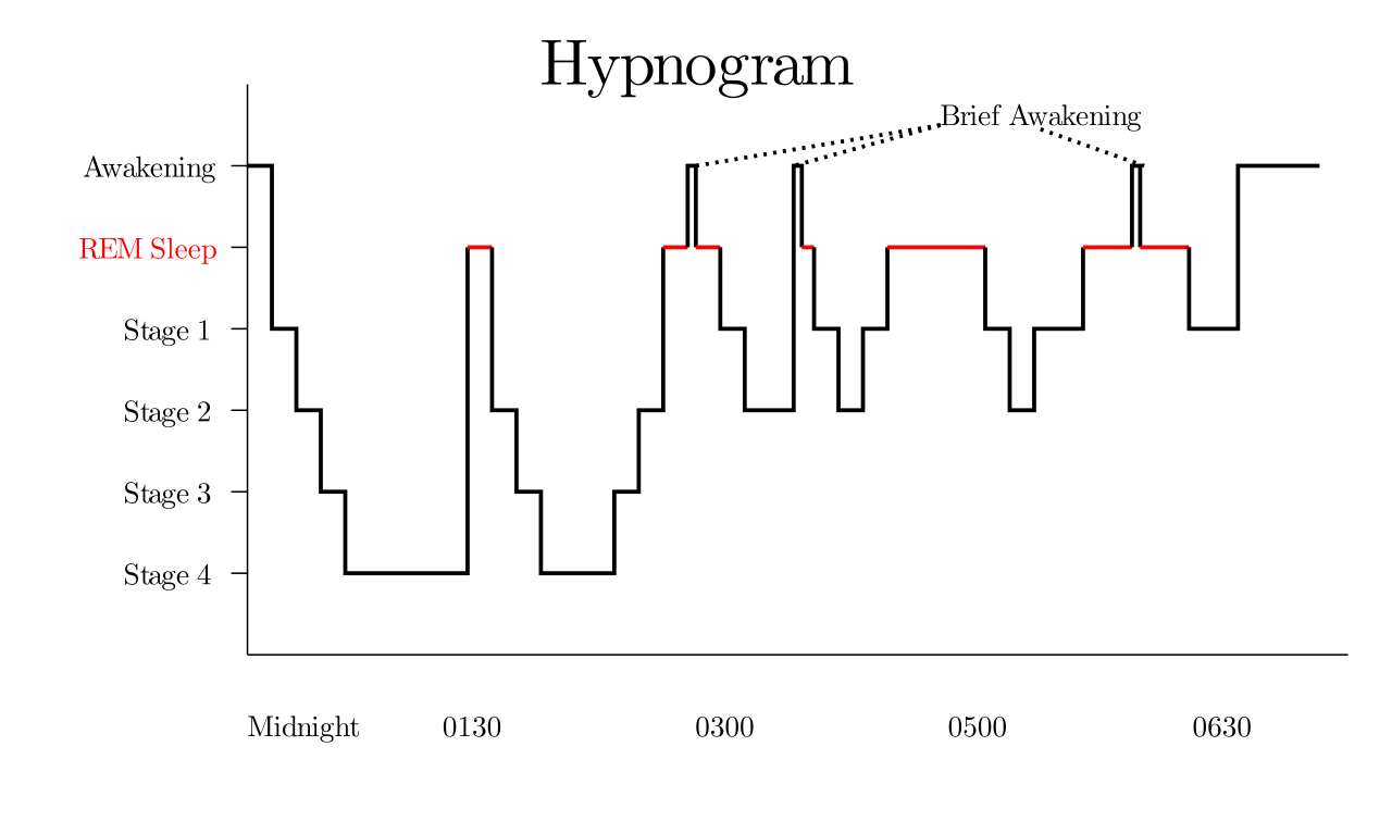 The Interactive Trigonometry Of Sleep Cycles