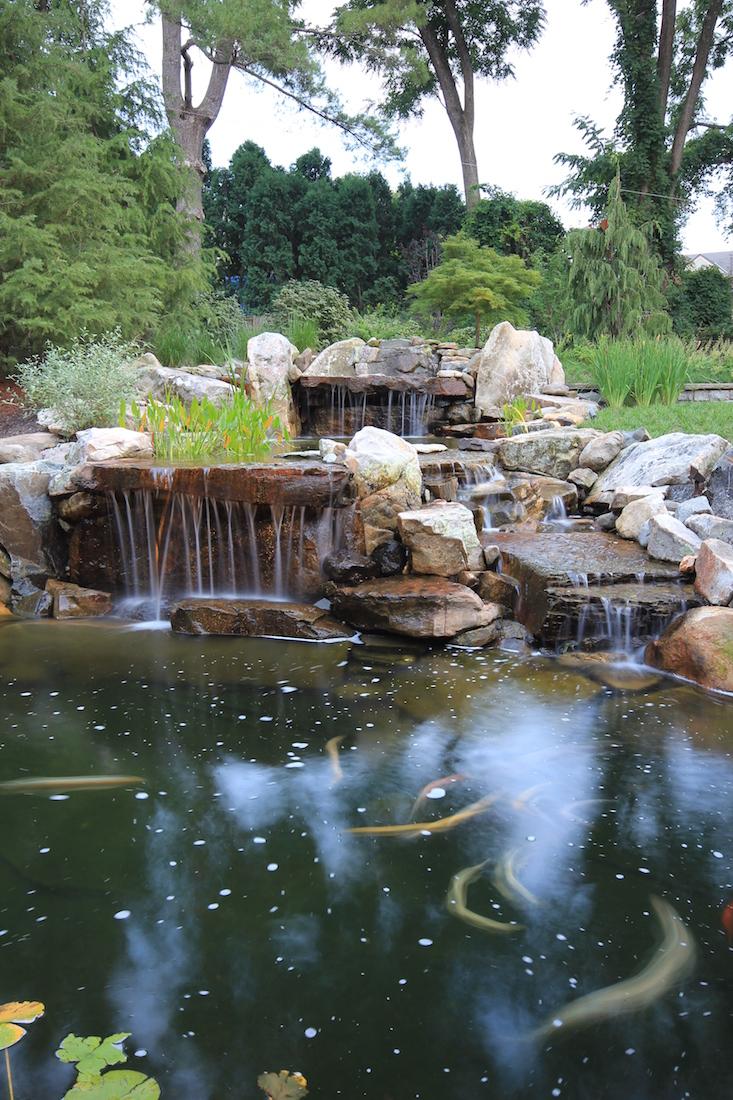 Pond Waterfall Design Ideas