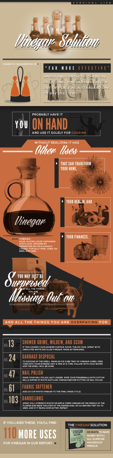 Vinegar_Infographic
