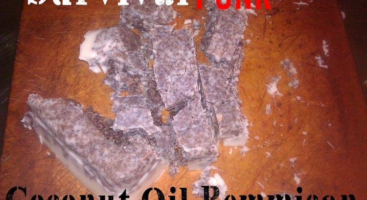 Coconut Oil Pemmican
