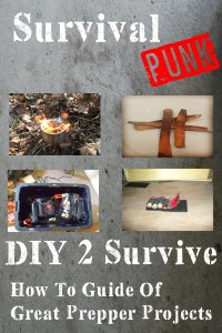 DIY 2 Survive