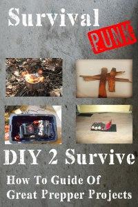 DIY 2 Survive