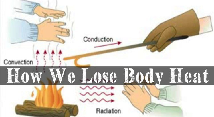 How Do We Lose Body Heat Conduction, Convection, And Radiation