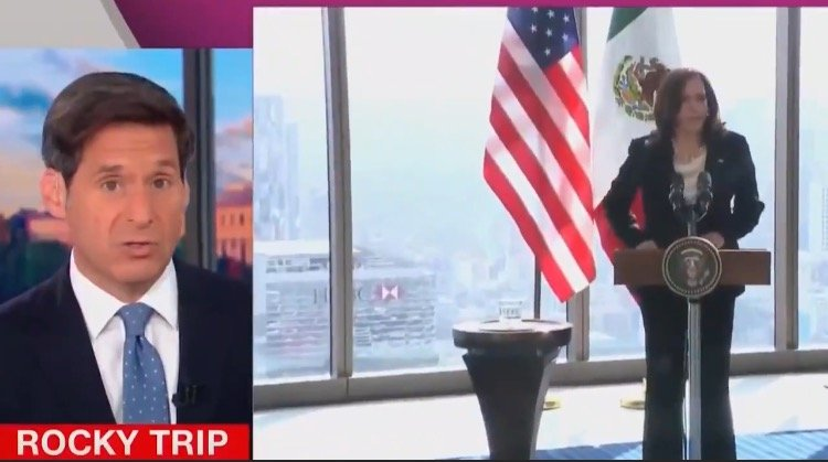 CNN Says Kamala Harris' First Foreign Trip Was a Disaster (VIDEO)