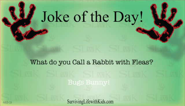 Daily Joke: What Do You Call A Rabbit with Fleas?