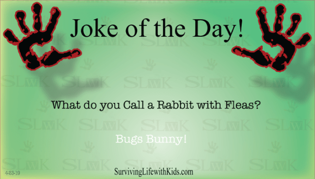 What Do You Call A Rabbit with Fleas?