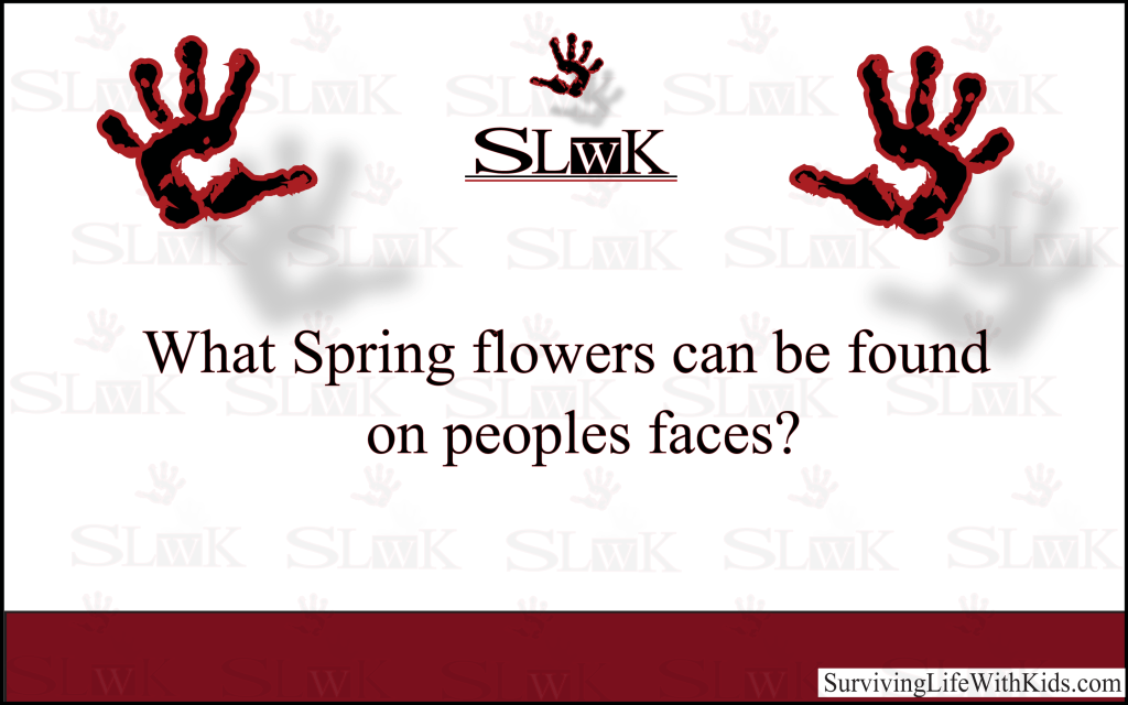 What Spring Flowers can be found on peoples faces?