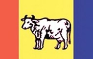 बीसलाख सदस्यता वितरण गर्दै राप्रपा