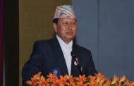 rovincial and central elections necessary for constitution's implementation: Minister Basnet