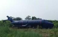 एति एयरलाइन्सको जहाज ठूलो दुर्घटनाबाट जोगियो