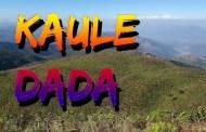 चिया बगानको स्वरुप दिँदै पाल्पाको पर्यटकीय काउलेडाँडा