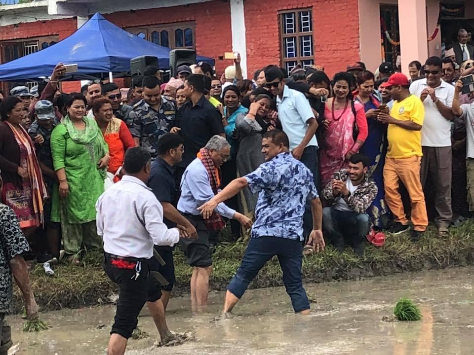 NC President Deuba attends paddy plantation
