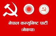 नेकपा संसदीय दलको प्रमुख सचेतकमा अधिकारी