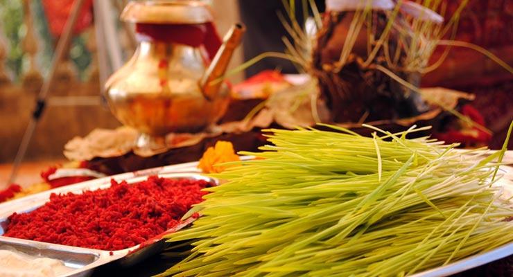 नवदुर्गाको सातौं दिन आज घरघरमा शास्त्रीय विधिअनुसार फूलपाती भित्र्याइँदै