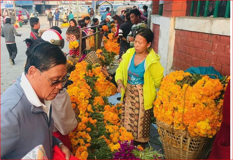 चार करोडको फूल बिक्री, भारतीय फूलको आयात ६० प्रतिशत घट्यो