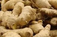 अदुवाकोे आकर्षक मूल्य पाउँदा किसान दङ्ग