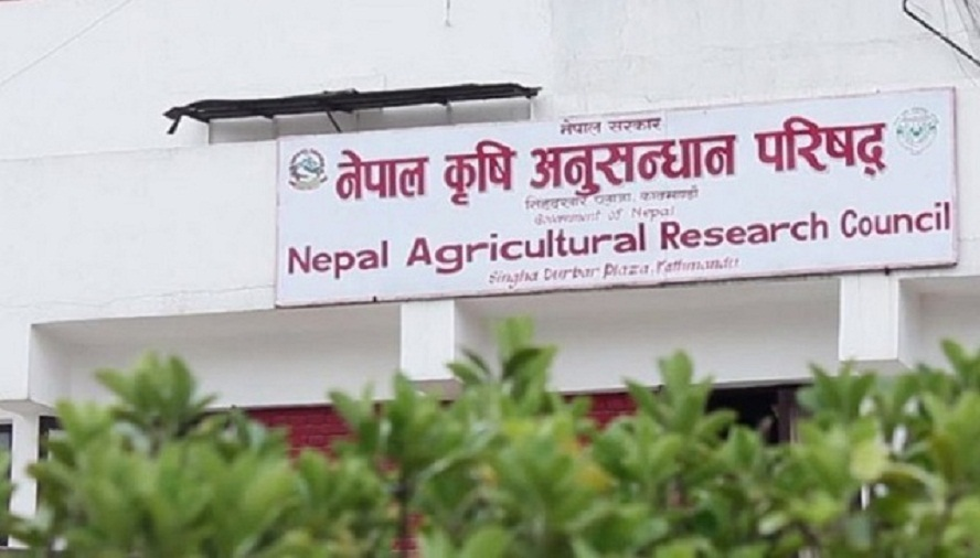 नेपाल कृषि अनुसन्धान परिषद् (नार्क)मा आवश्यक कर्मचारीको अभाव