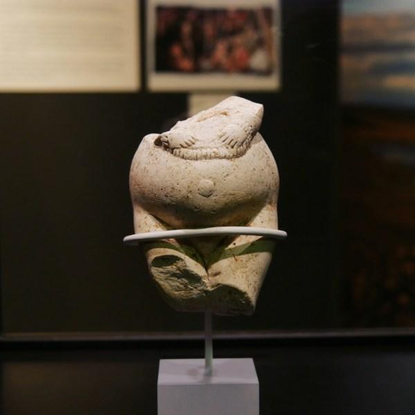 Dame in weiß (25.000 Jahre alt)