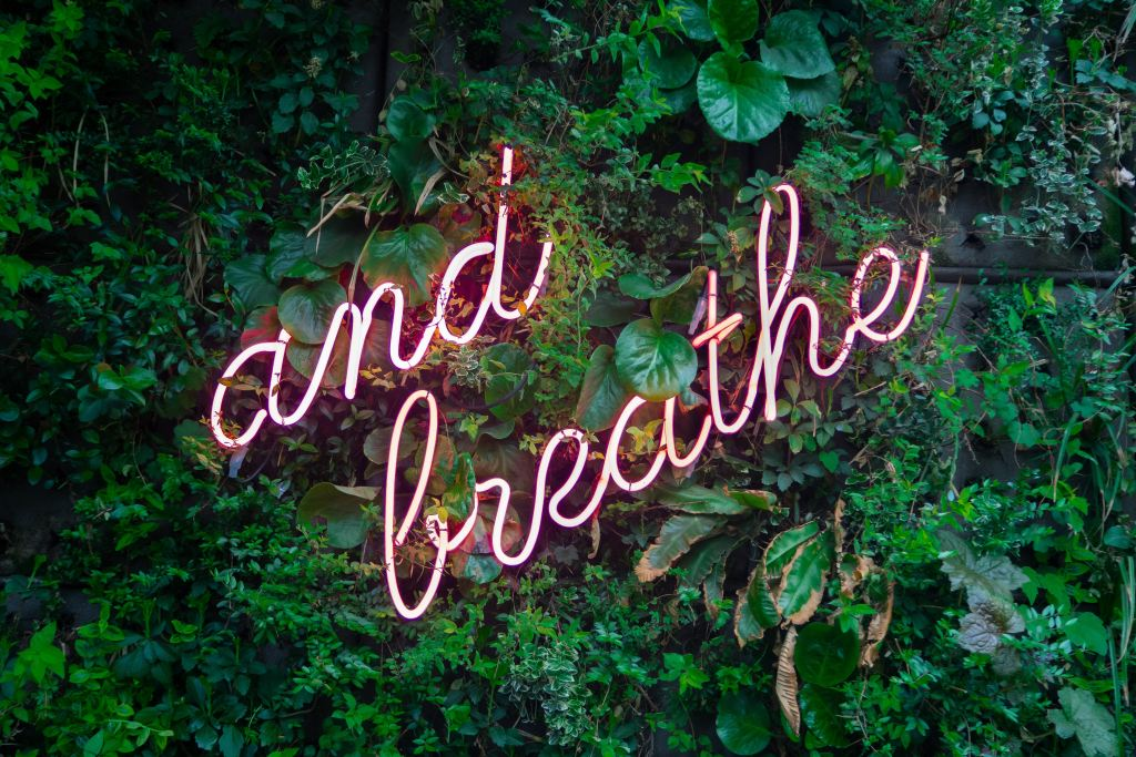"Words ""and breath"" on neon sign with green leaves in background."