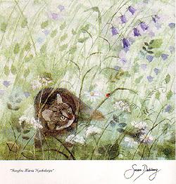 Bild på konstkort