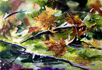 "Vernal Pool, Mayville; 14 x 20"" transparent watercolor on rough paper"