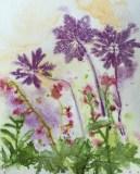 "Garden Dream, 9 1/2 x 7 1/2"" transparent watercolor"
