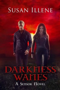 Darkness Wanes medium cover