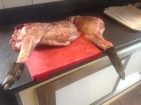 wild boar on the butcher block
