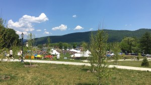 Wine fest overview
