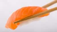 Nigiri Sushi (nigiri-zushi)