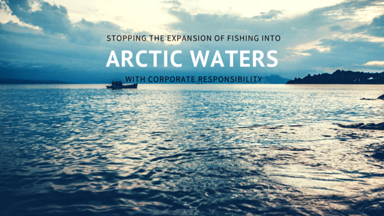 Corporate Responsiblity Arctic Fishing