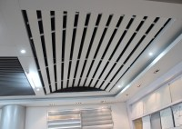 Domed Linear metal ceiling Aluminum Install with Curved ...